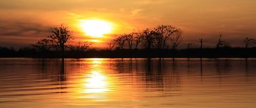 sunset gold golden pastel pano gilded highwater 50d lakestlawrence berginisland canoescape