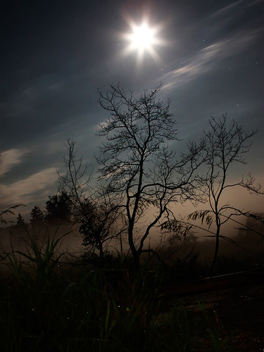 longexposure silhouette fog night canon landscape star trails l 2470 50d