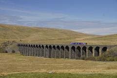 Northern Rail 52017 DMU bij Ribblehead Viaduct 02-05-2013