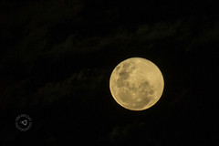 2014-06-13 Moonrise 065