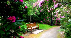 The month of May in Government house gardens .. Victoria BC