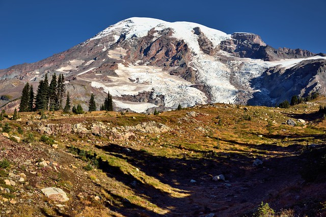 Looking Across a Rugged Countryside to Take in a View of Mount Rainier  (Mount Rainier National Park)