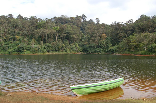 Ein grünes Boot im See von Periyar. Auf der anderen Seite geht es in den Dschungel.