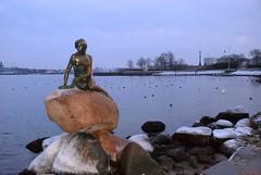 Copenhagen (DK) - Statua della Sirenetta