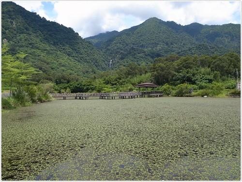 花蓮羅山大魚池