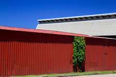 building, roof, red, line, architecture, facade,