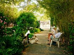 M'finda Kalunga Community Garden, East Village, New York City