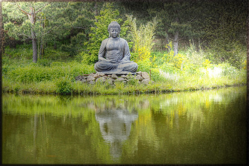 Buddha am Teich - Buddha on the pond