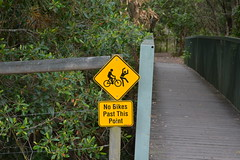 Watch out for bikes.