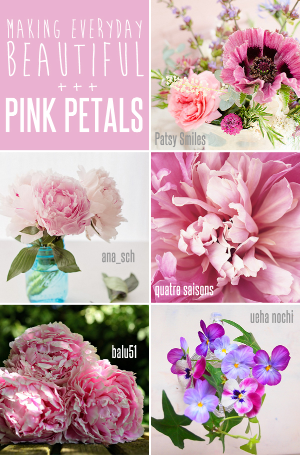 making everyday beautiful : pink petals | Emma Lamb