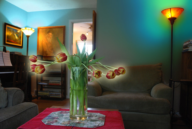Another Look, Into the Light, Tulips and Living Room, May 16, 2014 9-6 full bpx