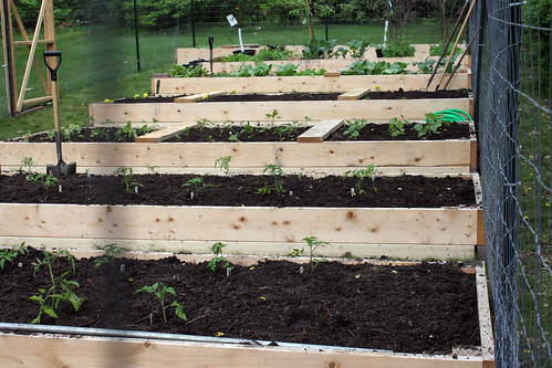 new garden 8048