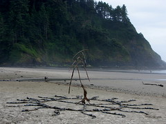 Dancing Peace Tree at Heceta Head, OR