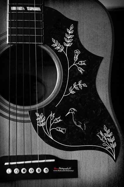 Photo:Epiphone Hummingbird Limited Edition Acoustic Guitar Portfolio4 By shaunanyi