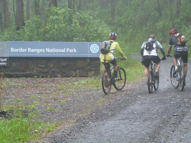 Border Ranges National Park