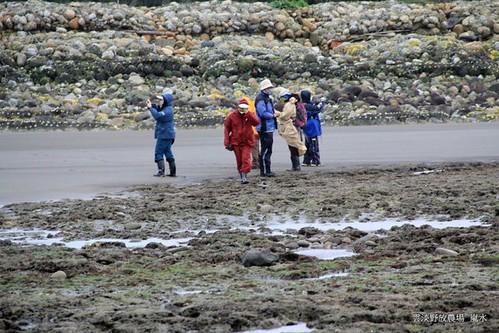 3月13日一群守護藻礁的志工清晨0630低溫10度下探勘藻礁現況。(攝影:呂東杰)