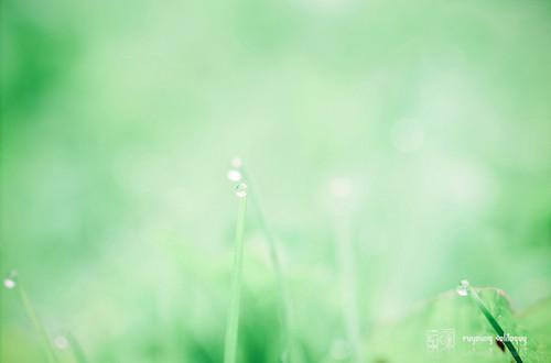 GXR_A12_50mm_intro_09
