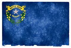 Nevada Grunge Flag