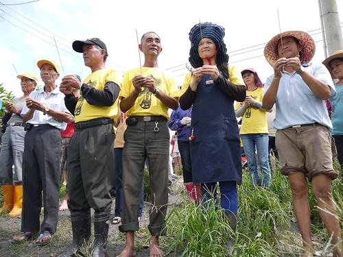 溪州農民先謝天,然後割稻。(圖片來源:反中科搶水自救會)