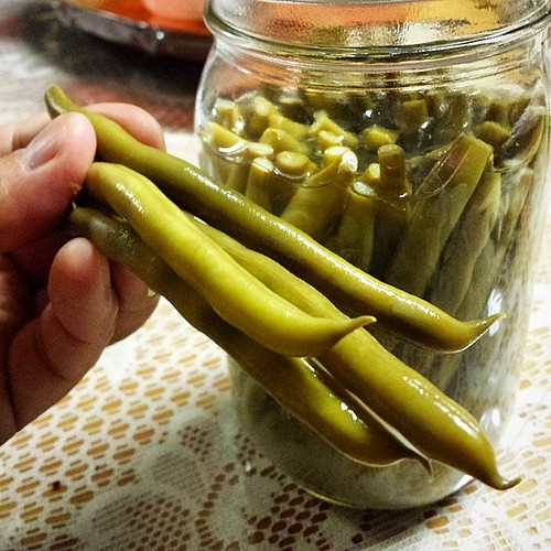 These Lacto-Fermented Green Beans