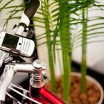 BlackBerry and Bike