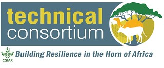 Technical Consortium for Building Resilience in the Horn of Africa logo