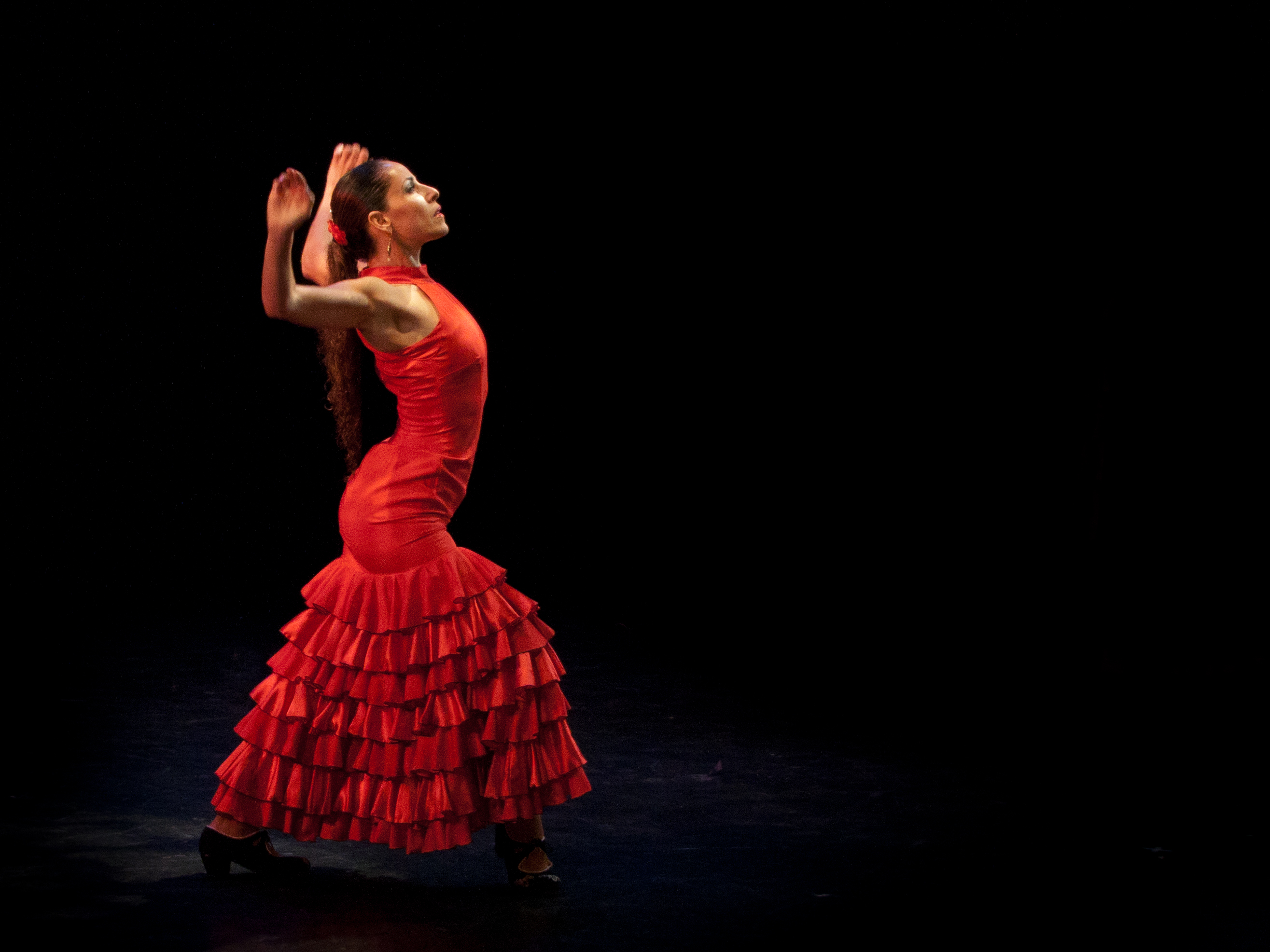 Modern Flamenco: Carmel Natan Sheli.