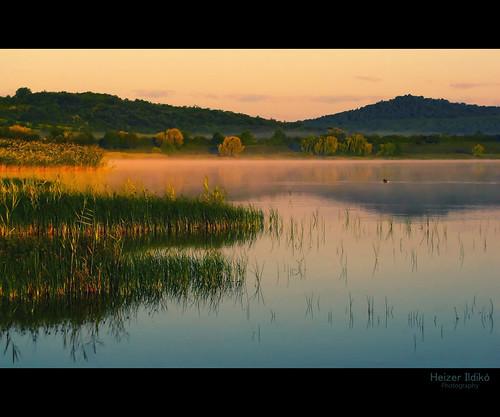 reflection water hungary természet tó táj köd tájkép nyár reggel napfelkelte tükröződés víz vízpart canonsx10 ringexcellence