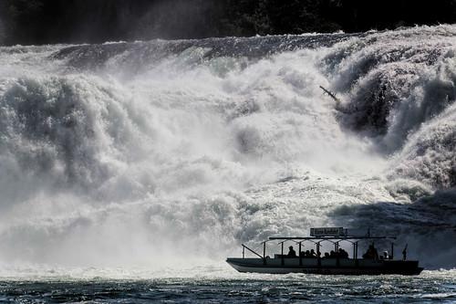switzerland eau europe suisse bateau cascade rheinfall neuhausen rhin chutesdurhin schaffhouse