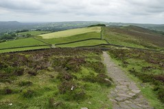 The Roaches to Back Forest (308)