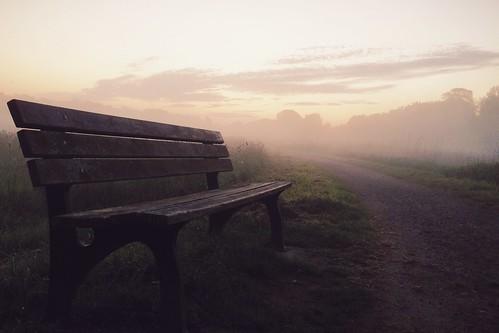 morning fog sunrise bench