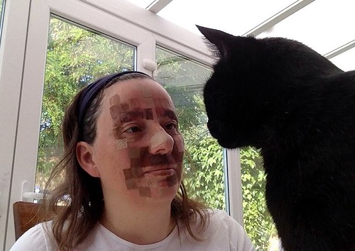 Testing some face paint, cat provides advice