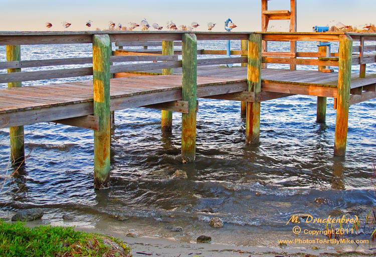 Sebastian treasure coast florida around guides for Vero beach fishing pier