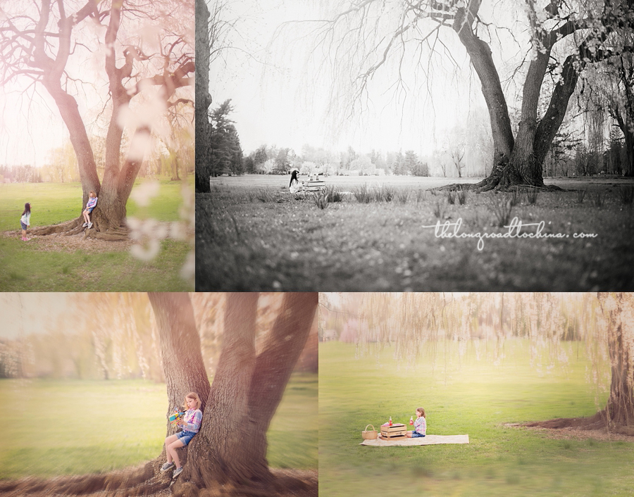 The Giving Tree Collage 3