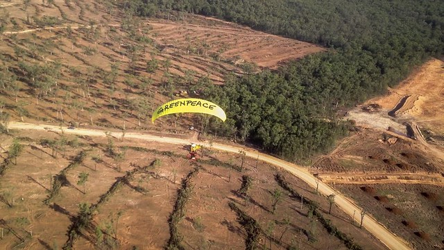 Content from Greenpeace Paragliders over Leard State Forest June 2014