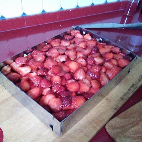 Friedas Erdbeerschnitte mit Backrahmen