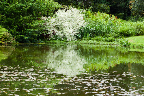 Wightwick Manor pool