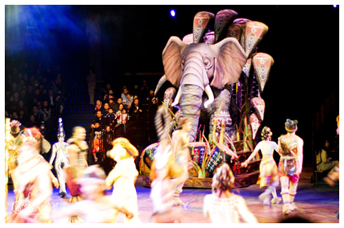 festival of the lion king elephant