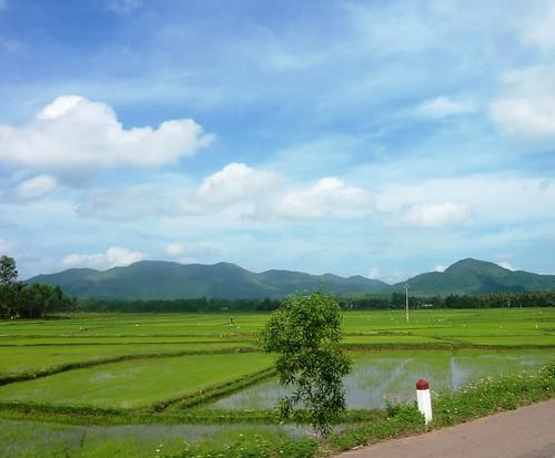 V-Route Quy Nhon-Da Nang (18)