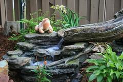 Une petite fontaine et sa grenouille au milieu de la rocaille