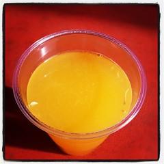 こちらに来てからずうっと飲みたいと思っていた生絞りのみかんジュース。これは5月採りの甘夏2.5個分。おいちー。お寺さんのお隣です。。