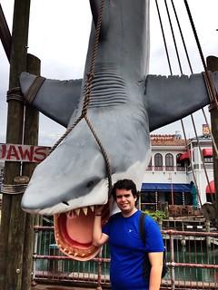 Janguiando con tiburón extraño #inf115 #flickd14 #d13