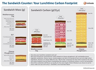 The sandwich counter: Your lunchtime carbon footprint
