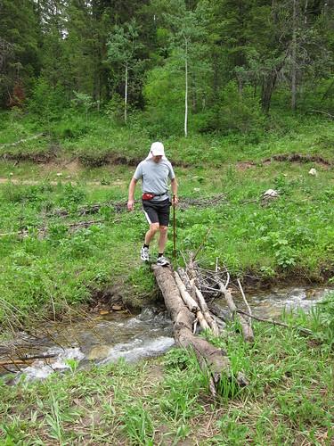 hiking, walking stick, crossing a stream, s… IMG_6864