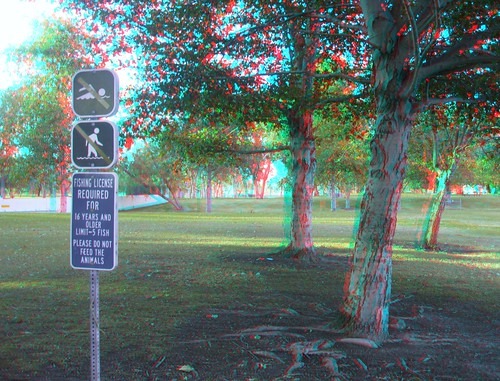 3Dv2.0FieldTest-ANAGLYPH 033
