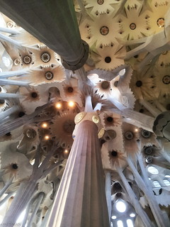Artsy Cathedral Ceiling