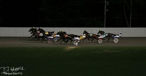 horses horseracing harnessracing tiogadowns bettingtheponies harnesshorseracing