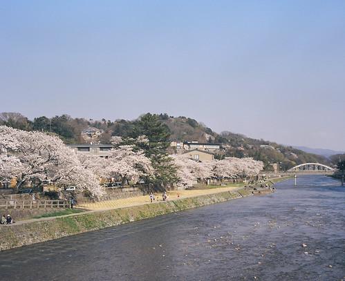 2014-04-09 浅野川