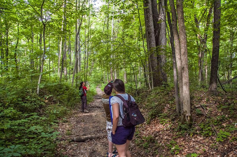 Green's Bluff Nature Preserve