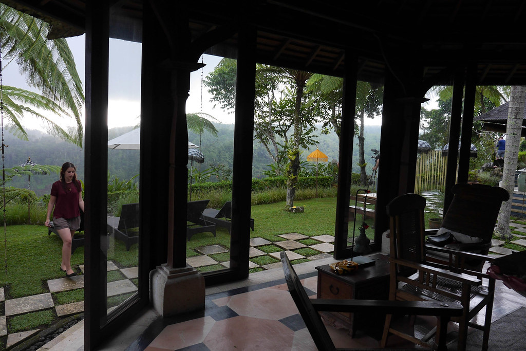 View from the common area at Puri Naga Toya villa in ubud, Bali.jpg